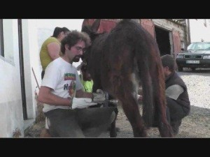 Leonardo deCurtis in Portogallo. Con due giovani veterinari nella foto.