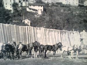 dal museo degli zattieri, Codissago (BL)