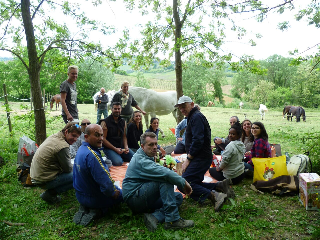 """italian horse protection"" IHP, Tuscany. Trimmers, volunteers. April 2017"